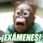Preparar Examenes Junio 2018